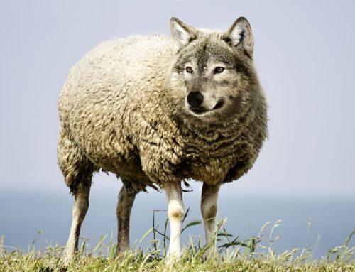 Leefstijlgeneeskunde, een wolf in schaapskleren?